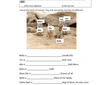 Comparison of Adjectives - the Meerkat Family