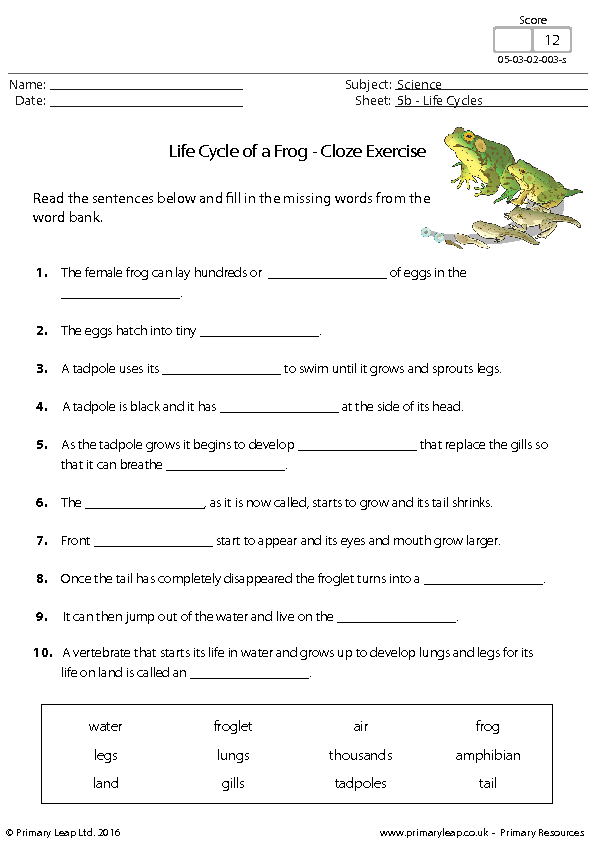 Cloze worksheets for first grade
