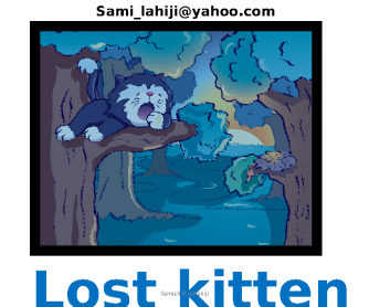 Story Book: Lost Kitten