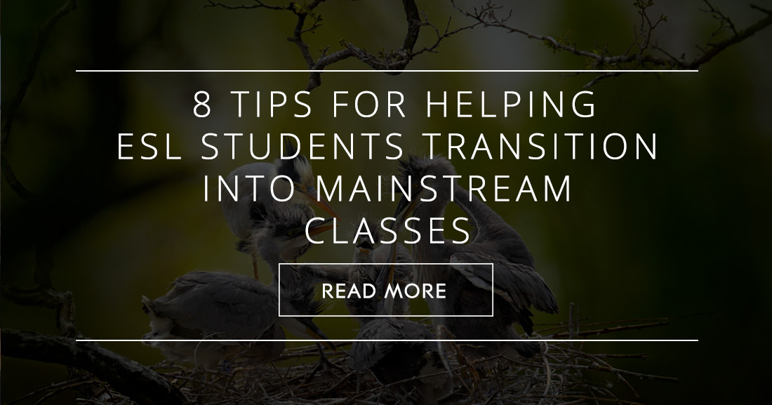 When it's Time to Leave the Nest: 8 Tips for Helping ESL Students Transition into Mainstream Classes