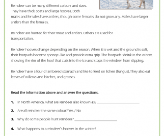 Christmas Worksheet: Reindeer - Reading Comprehension