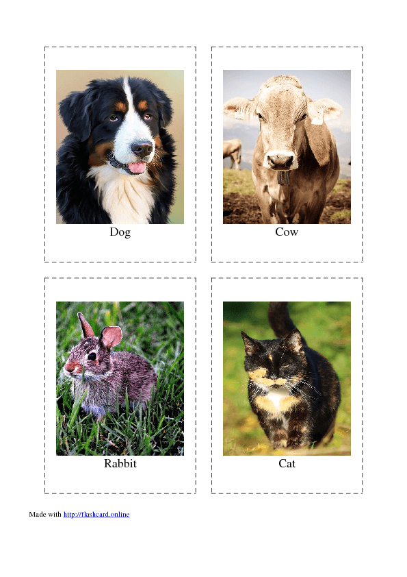 graphic regarding Printable Animal Flash Cards identified as 308 Totally free Flashcard Sets