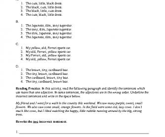 Adjective Order - Practice 3