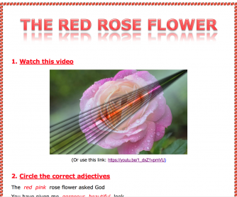 The Red Rose Flower Worksheet