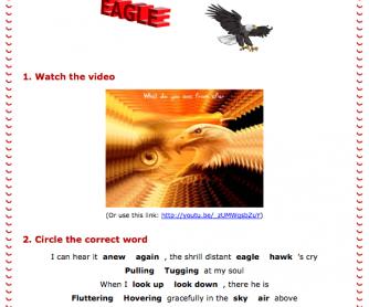 Eagle Video and Worksheet