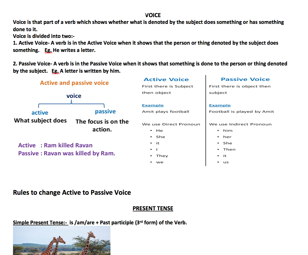 246 Free Passive Voice Worksheets