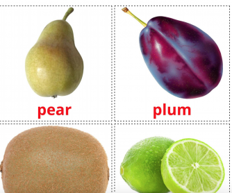20 Realistic Fruits Flashcards