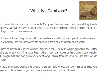Reading Comprehension - What Is A Carnivore?