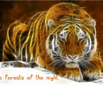 """Tiger Tiger, Burning Bright"" - Poem Worksheet"