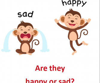 Are they happy or sad? Reader 3