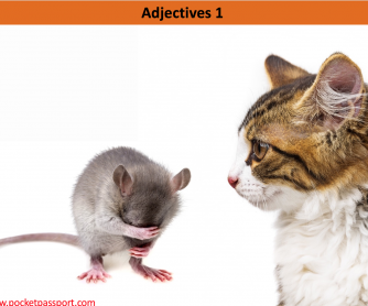 Adjectives PPT