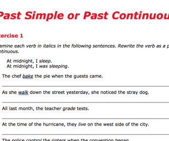 Past Simple or Past Continuous 1