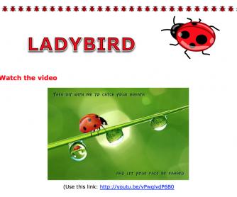 Ladybird Poem Video Activity Worksheet