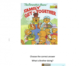 The Berenstain Bears Family Get-Together