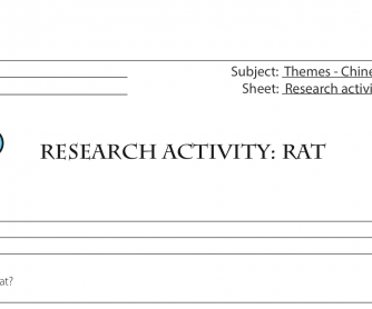 Research Activity – The Rat